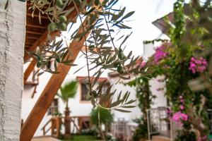Courtyard, Hotels  Kalkan - big - 41