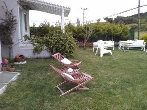 Aspasia House, Bed & Breakfasts  Bozcaada - big - 29