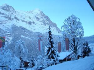 Parkhotel Schoenegg, Hotel  Grindelwald - big - 54