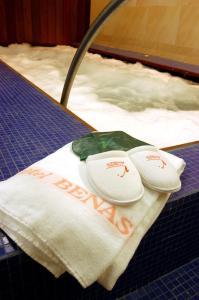 SOMMOS Hotel Benasque Spa, Отели  Бенаске - big - 7