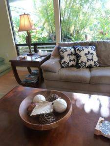 Kauai Vacation Home, Dovolenkové domy  Princeville - big - 8