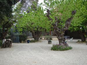 Chateau Pech-Céleyran, B&B (nocľahy s raňajkami)  Salles-d'Aude - big - 51