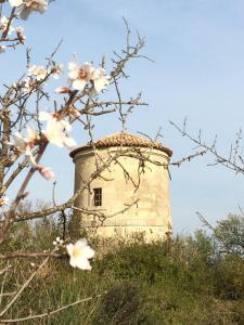 Chateau Pech-Céleyran, B&B (nocľahy s raňajkami)  Salles-d'Aude - big - 28