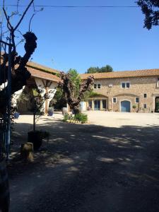 Chateau Pech-Céleyran, B&B (nocľahy s raňajkami)  Salles-d'Aude - big - 8