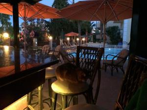 Bueno Hotel, Residence  Platanes - big - 116