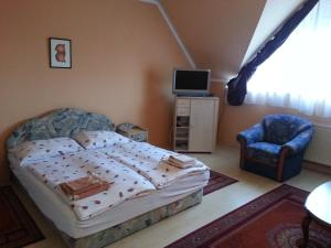 Aramis Apartments, Appartamenti  Hévíz - big - 58