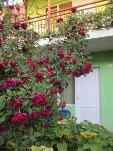 U Silvi Guest House, Guest houses  Adler - big - 40