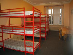 Single Bed in 8 or 10-Bed Dormitory Room with Shared Bathroom