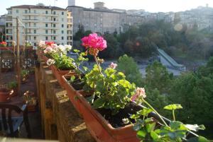 Alla Residenza Domus Minervae - AbcAlberghi.com