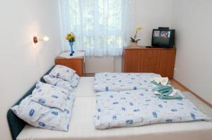 Aramis Apartments, Appartamenti  Hévíz - big - 71