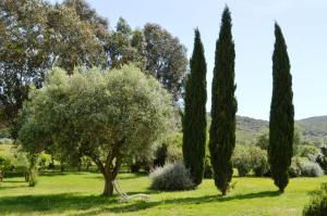 Tenuta Agricola dell'Uccellina, Farm stays  Fonteblanda - big - 129