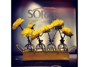 SORAT Hotel Cottbus, Отели  Котбус - big - 32