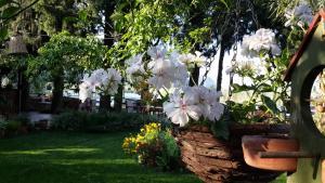 Hotel Happy Caretta, Pensionen  Dalyan - big - 30