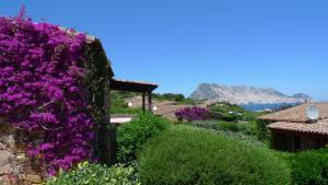 Casa Molara - AbcAlberghi.com