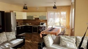 Alex House, Case vacanze  Borovlyany - big - 3