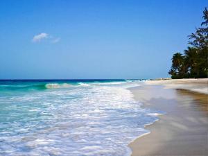 Turtle Beach (18 of 36)