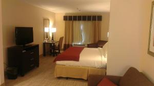 King Suite with Sofa Bed- Disability Access - Non-Smoking