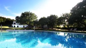 Tenuta Monacelle, Resort  Selva di Fasano - big - 40