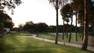Tenuta Monacelle, Resort  Selva di Fasano - big - 38