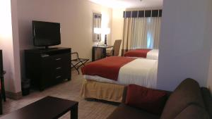 Queen Suite with Sofa Bed - Disability Access/Non-Smoking