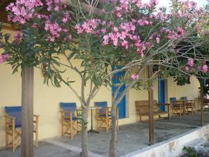Agios Antonios (Perissa)