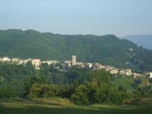 Agriturismo il Tiglio, Hétvégi házak  Coreglia Antelminelli - big - 24