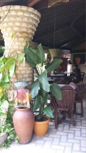 Pousada Coco Fresco, Гостевые дома  Пипа - big - 40