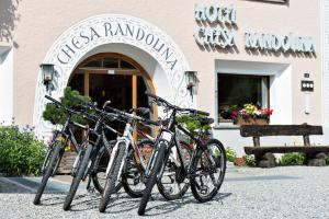 Hotel Chesa Randolina (23 of 91)
