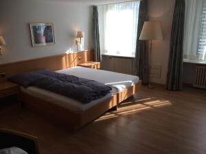 Hotel Schwert, Отели  Нефельс - big - 12