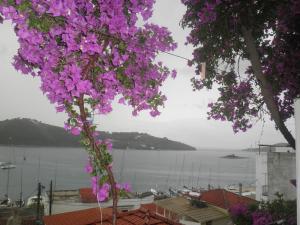 Babis, Hotely  Skiathos Town - big - 54