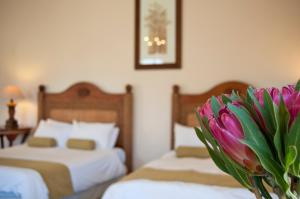 Palm House Luxury Guest House, Guest houses  Cape Town - big - 21