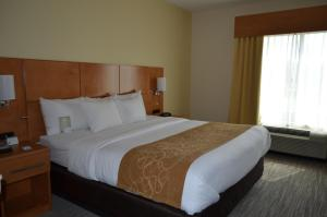Comfort Suites Bossier City, Hotels  Bossier City - big - 9