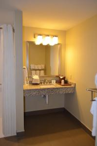 Comfort Suites Bossier City, Hotels  Bossier City - big - 4