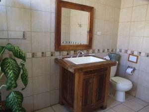 Hotel Posada del Museo, Hotels  San José - big - 7