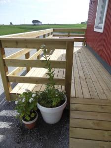 Red Bird Farm, Bed & Breakfasts  Ystad - big - 48
