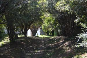 Fazenda Caturama, Country houses  Areal - big - 43