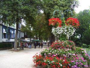 Harzburger Ferienwohnung, Apartmány  Bad Harzburg - big - 2