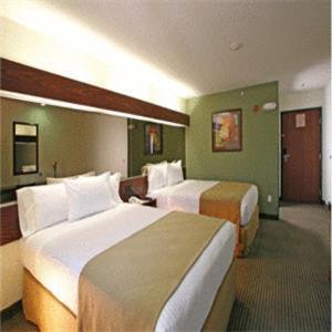Microtel Inn and Suites by Wyndham Juarez, Hotely  Ciudad Juárez - big - 7