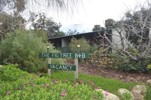 The Fig Tree BandB