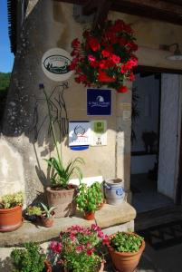 Le Jardin de la Sals (Ecluse au Soleil), Bed & Breakfasts  Sougraigne - big - 37