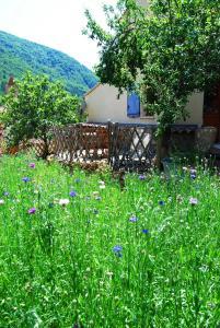 Gîte l'Ecluse au Soleil, Holiday homes  Sougraigne - big - 5
