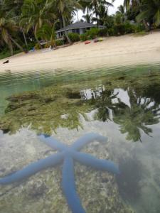 Sands Villas, Villas  Rarotonga - big - 27