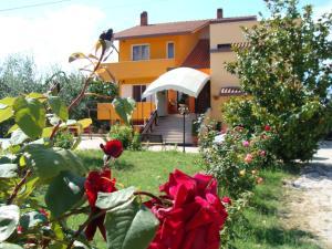 Casa Maris Stella - AbcAlberghi.com
