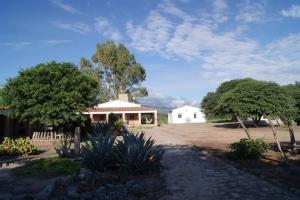 La Vaca Tranquila, Bed and Breakfasts  Cafayate - big - 24