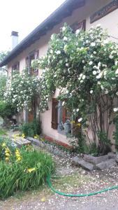Gites Les Mérilles, Prázdninové domy  Le Ménil - big - 13