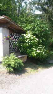 Gites Les Mérilles, Prázdninové domy  Le Ménil - big - 15