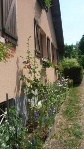 Gites Les Mérilles, Prázdninové domy  Le Ménil - big - 16
