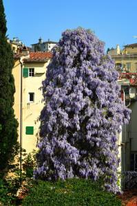 Foresteria Valdese di Firenze (6 of 34)