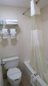 Budget Host Airport Inn, Motel  Waterville - big - 5