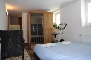 Villa Anastazis - Penzion Eden, Guest houses  Karlovy Vary - big - 123